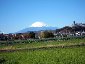 富士山と東海大学